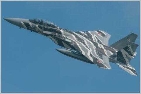 アグレッサー部隊は普通の戦闘機と違う迷彩塗装
